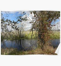Brazos Bend Poster