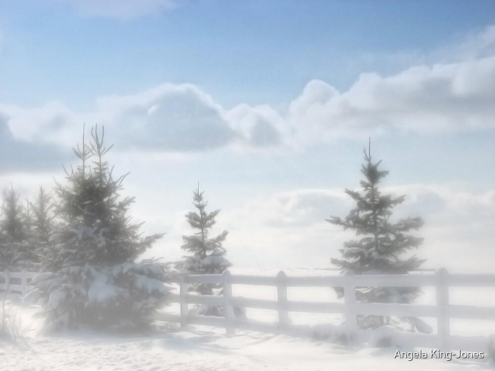 Winter is here by Angela King-Jones