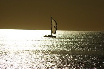 Summer Sail  by Anthony  Hoiland