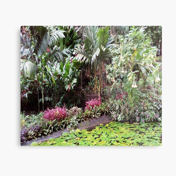 FIJI Islands Paradise Garden Metal Print