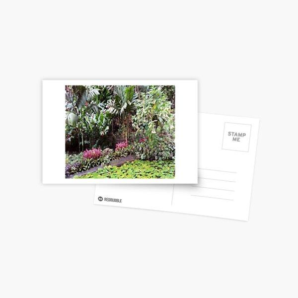 FIJI Islands Paradise Garden Postcard