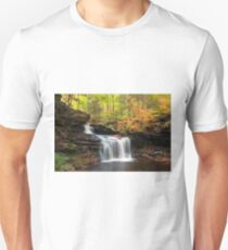 R. B. Ricketts in the Changing Forest  T-Shirt