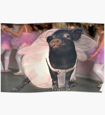 """""""Prancing Pig"""" - pig joining the dance class Poster"""
