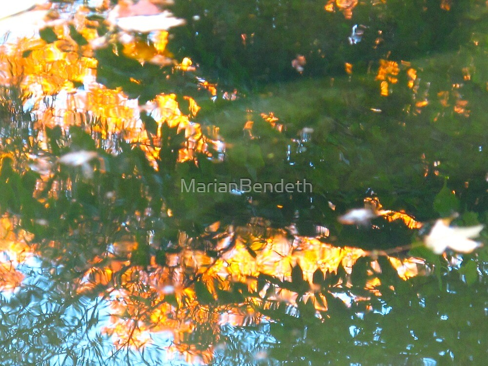 Autumn water harvest by MarianBendeth