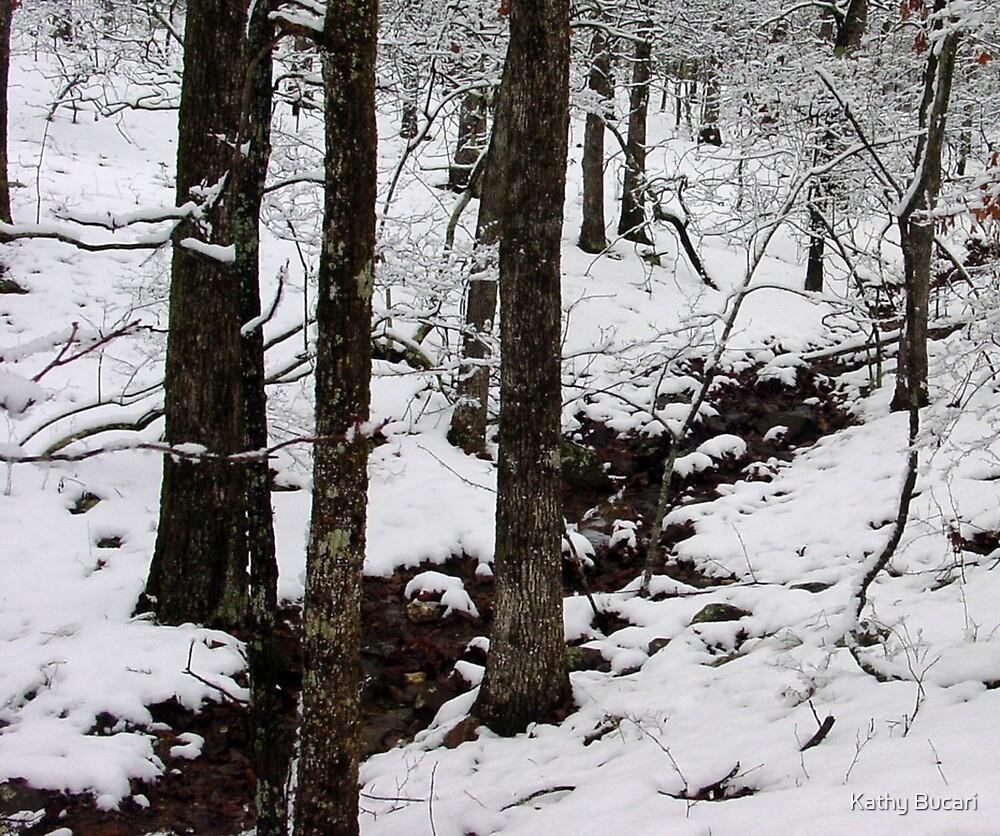 Winter Stream by Kathy Bucari