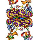 Gemini by Terry Smith