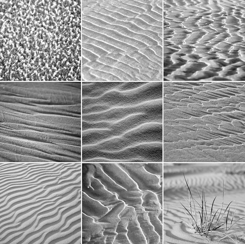 Nature's Design by islandreflectns