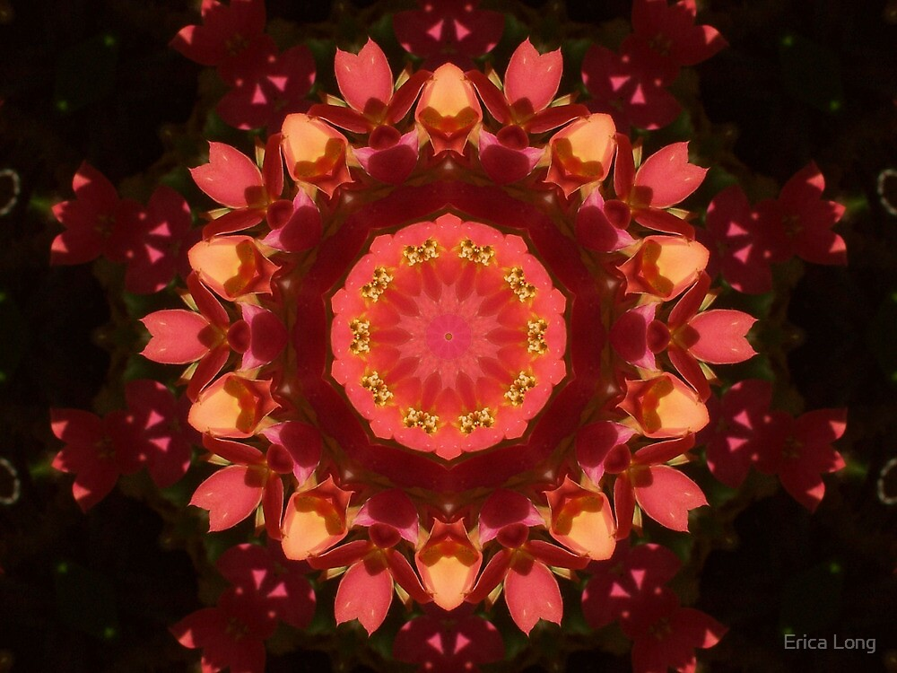 Petite Red Flowers by Erica Long