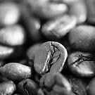 Coffee Beans by Igor Janicijevic