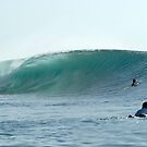 indo waves by stiddy