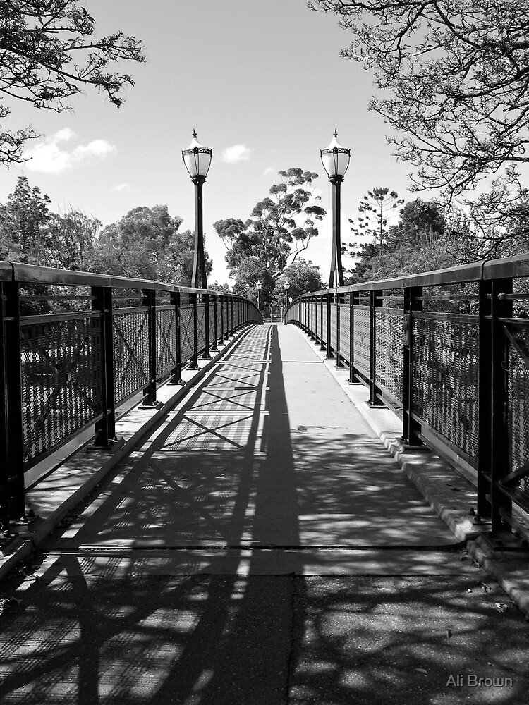 Adeladie Uni Bridge over the Torrens by Alison  Brown