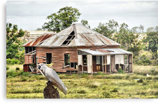 ''Home amongst the Gum Trees'' by bowenite