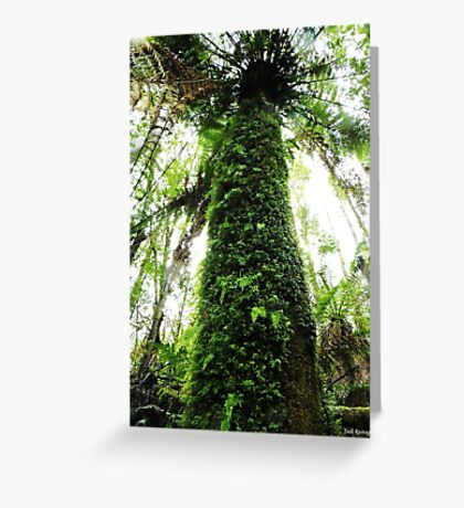 In The Rainforest  Greeting Card