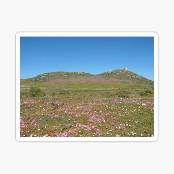 Westküsten-Wildblumen Sticker