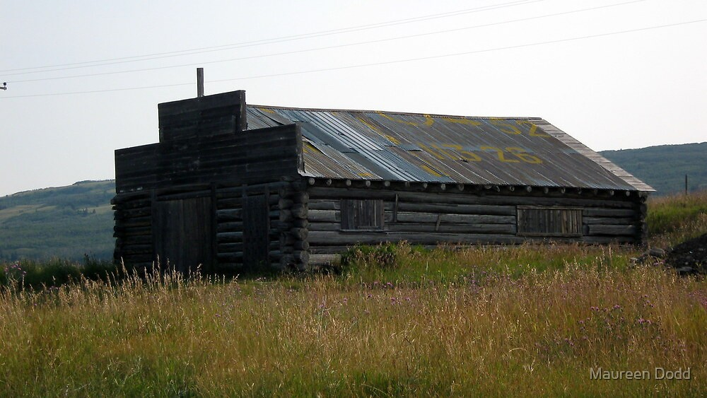 Old Shed on Farmland. by Maureen Dodd