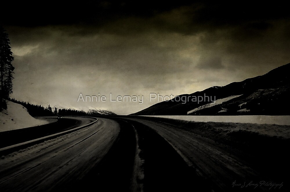 Going Home by Annie Lemay  Photography