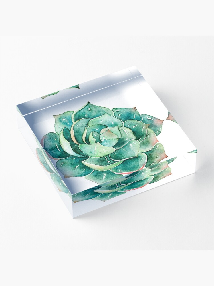 Alternate view of Watercolor Succulent sticker   Acrylic Block