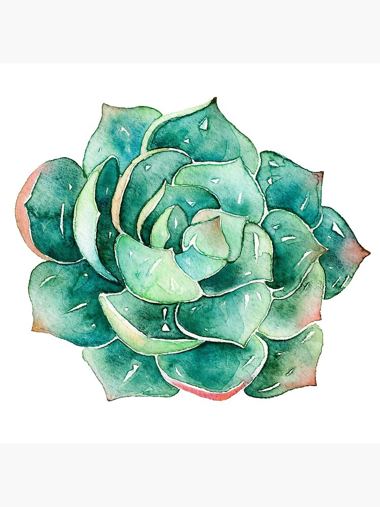 Watercolor Succulent sticker   by SouthPrints