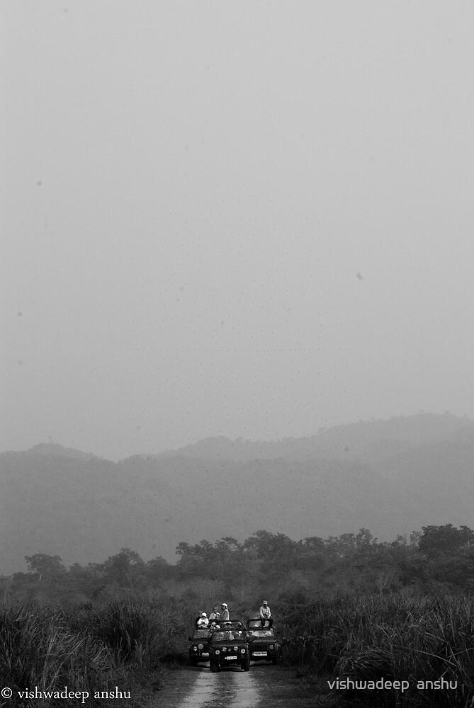 wildlife watching by vishwadeep  anshu