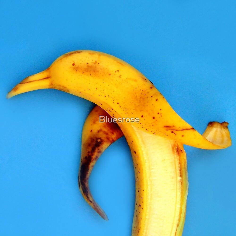 Bananabird by Bluesrose