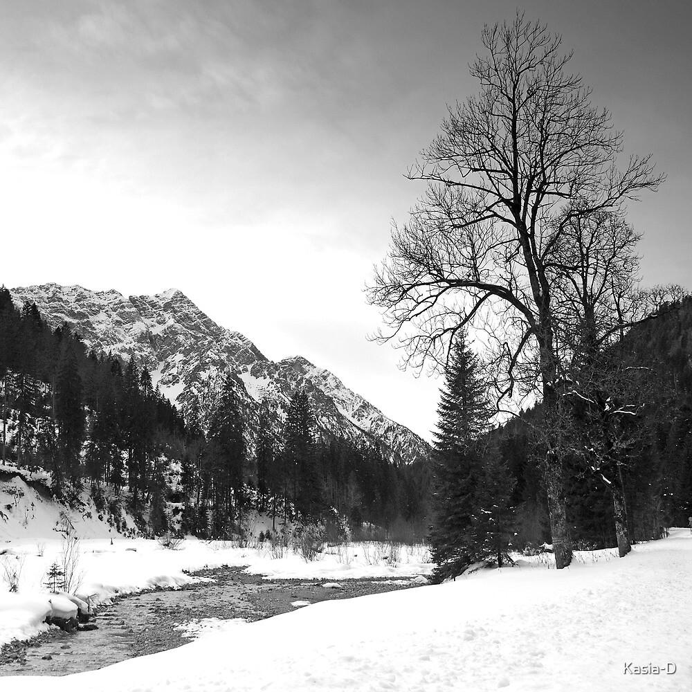 Riverside by Kasia-D