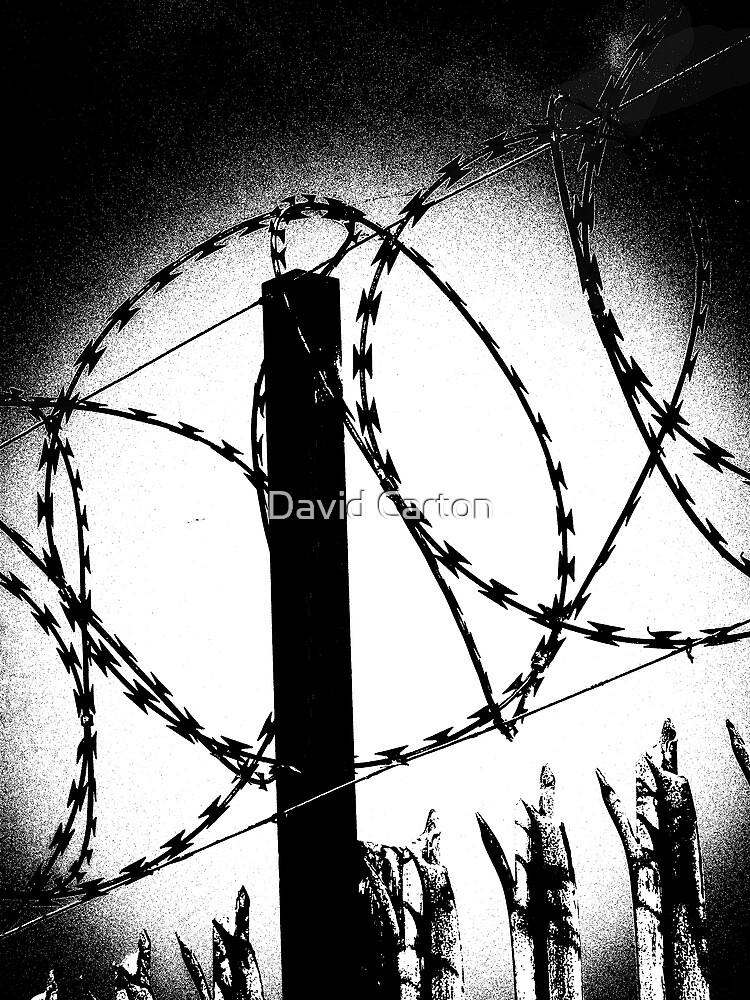 Keep out! by David Carton