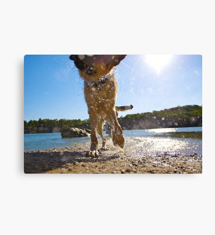 Shake n' Bake Canvas Print