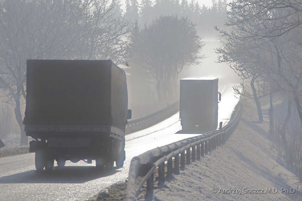 Road delusions in the Fog , by Brown Sugar . F* Views (235)  Thanks ! by © Andrzej Goszcz,M.D. Ph.D