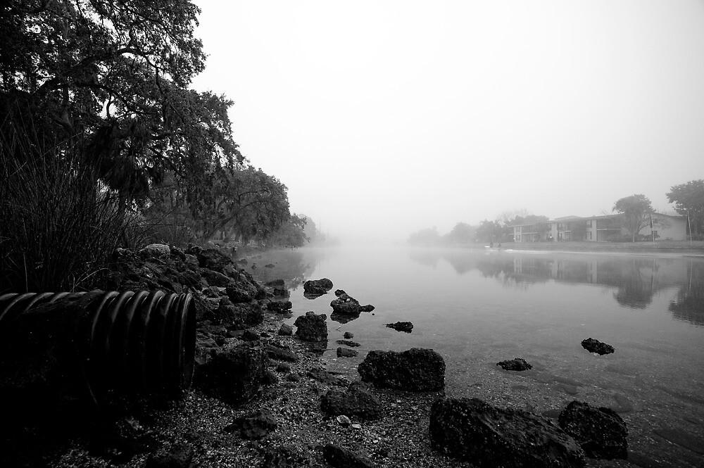 fog n fish by james smith