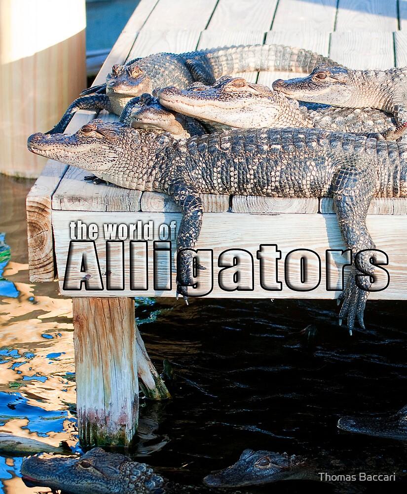 Alligators - Calendar Cover by TJ Baccari Photography