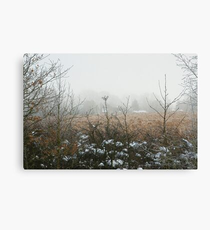 Freezing Fog Canvas Print