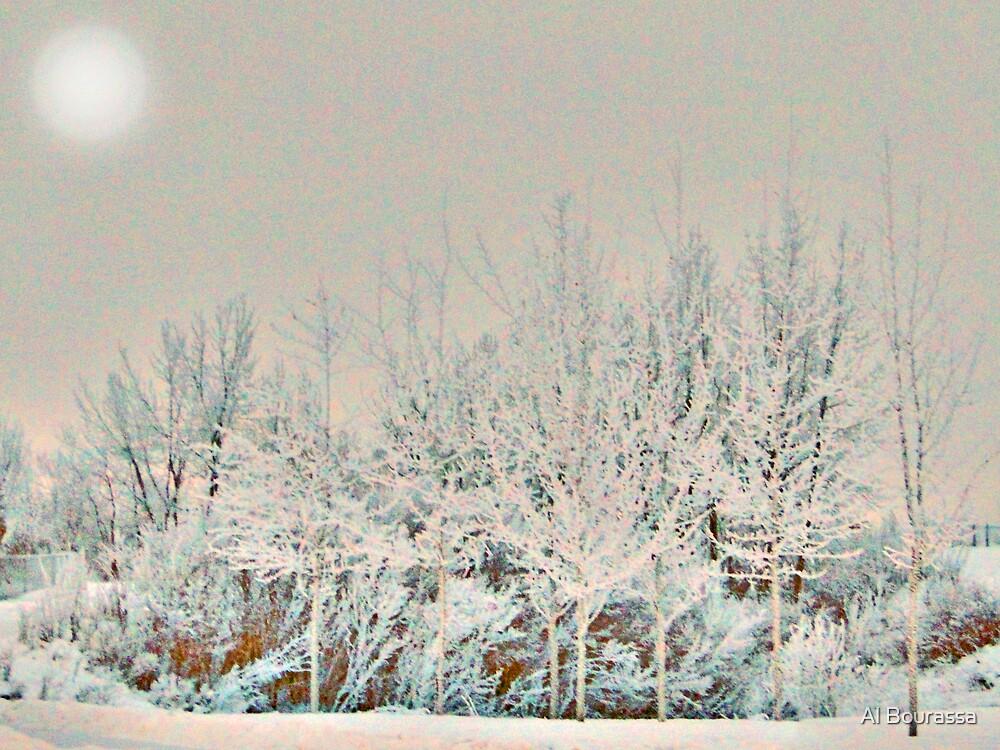 Winter Wizardry by Al Bourassa