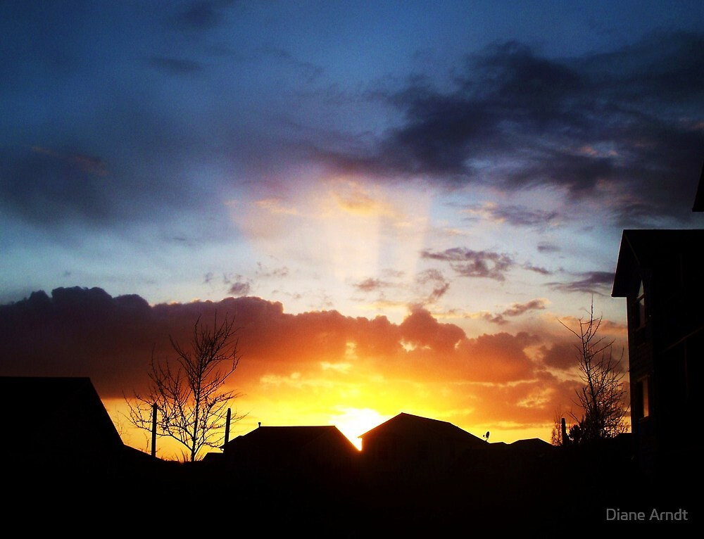 Follow The Sunbeam by Diane Arndt