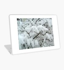 Tiny Branches Covered In Snow Laptop Skin