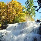 Chittenango Falls up close by Linda Long