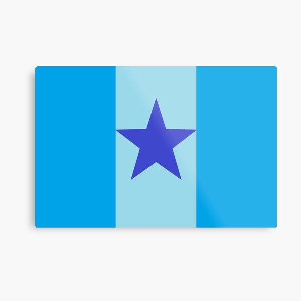 Star Flag In Blue Metal Print