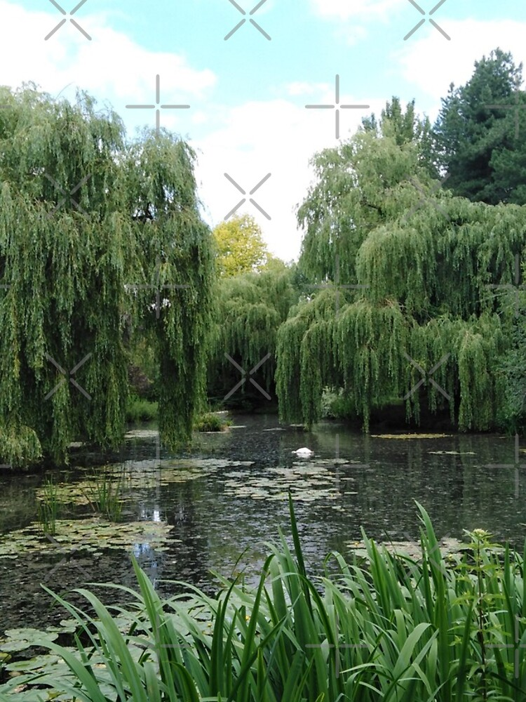 The Water Garden by MikeHawkinWorld