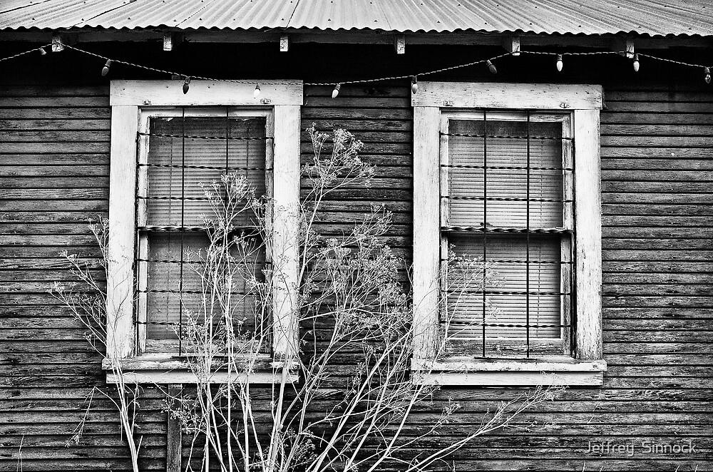 Windows by Jeffrey  Sinnock
