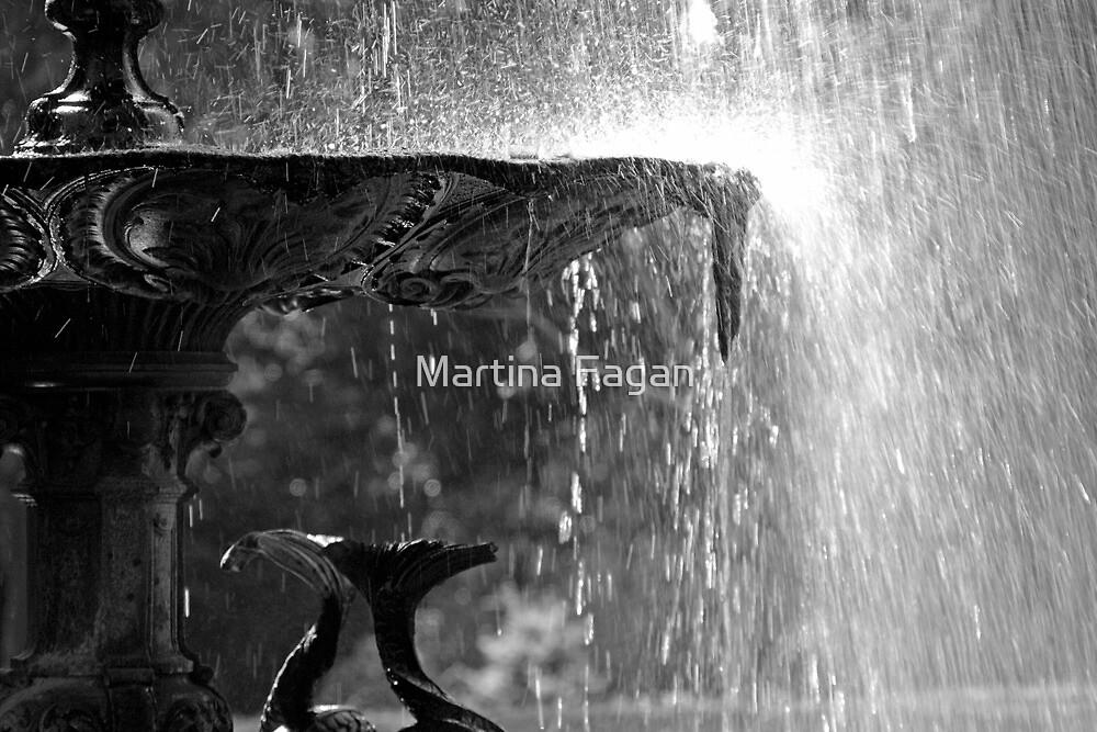 Just add water.... by Martina Fagan