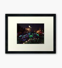 Night In The Sunken Garden (9) Framed Print