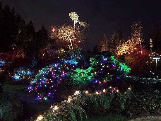 Night In The Sunken Garden (9) by George Cousins