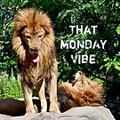 That Monday Vibe with lions by Beth Brightman