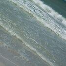 High Tide - Pass-a-Grille, FL by Danielle Ducrest