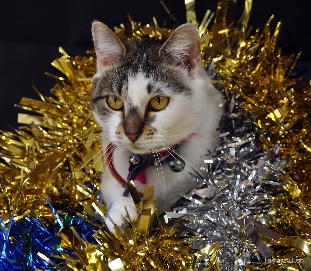 Christmas Prickles by Tamara Bush