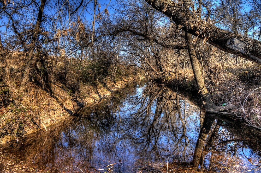 Reflection in the Creek by Terence Russell