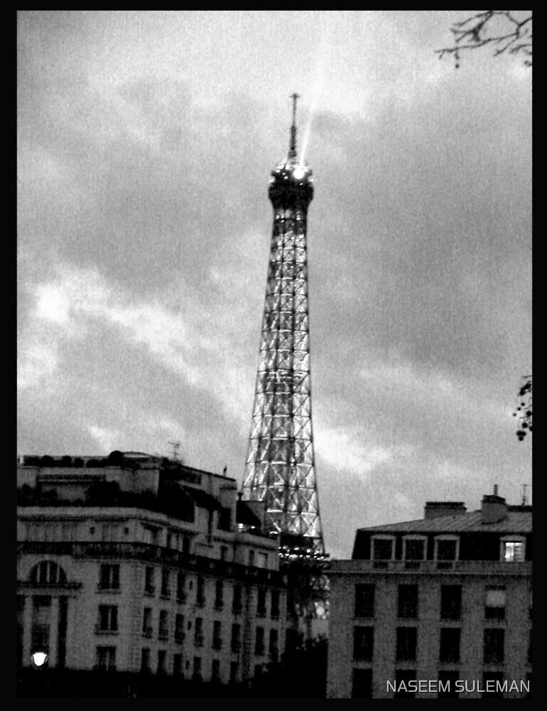 EIFFEL TOWER by NASEEM SULEMAN