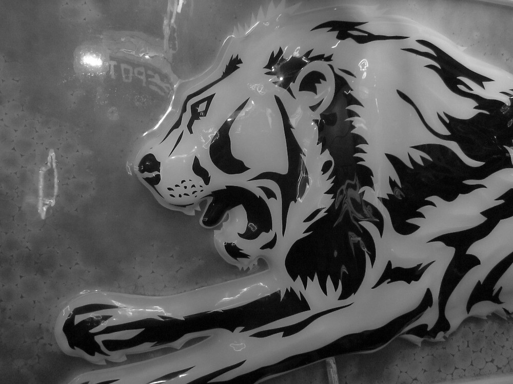sign lion by jack robinson