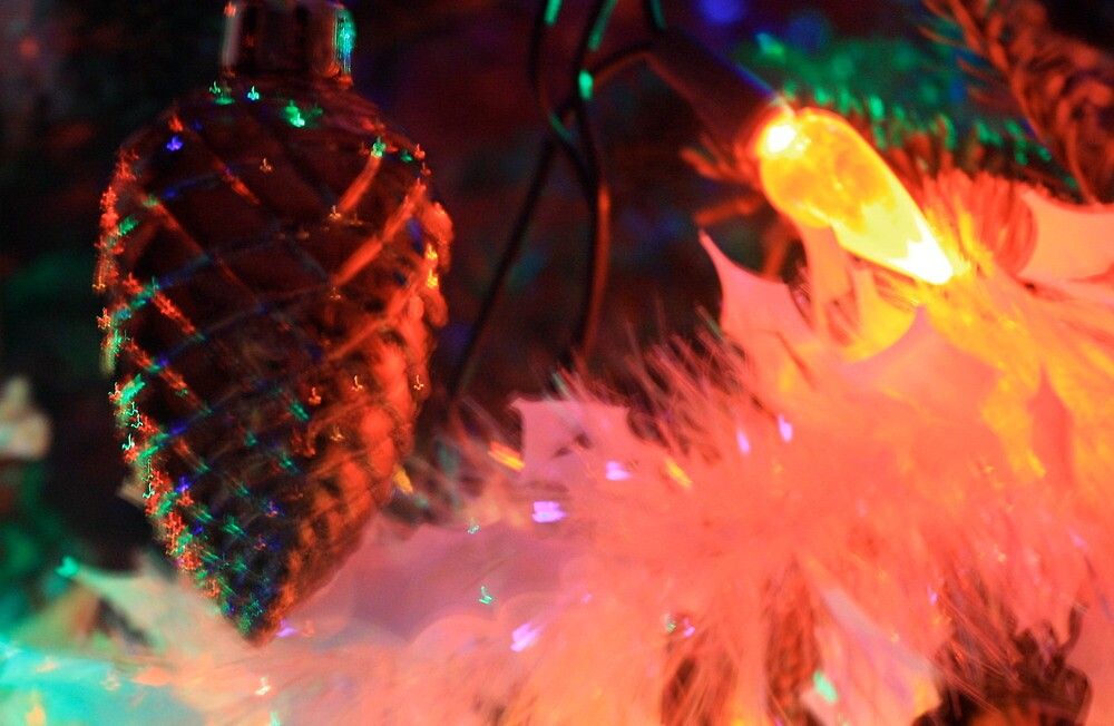 Tree Lights @ Night by Marcella Hadden