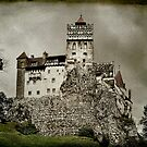 Dracula Was Here  by Lanis Rossi