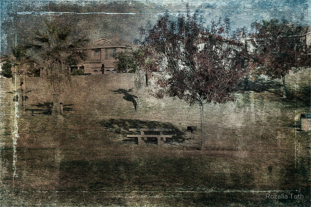 A Day At The Park by Rozalia Toth